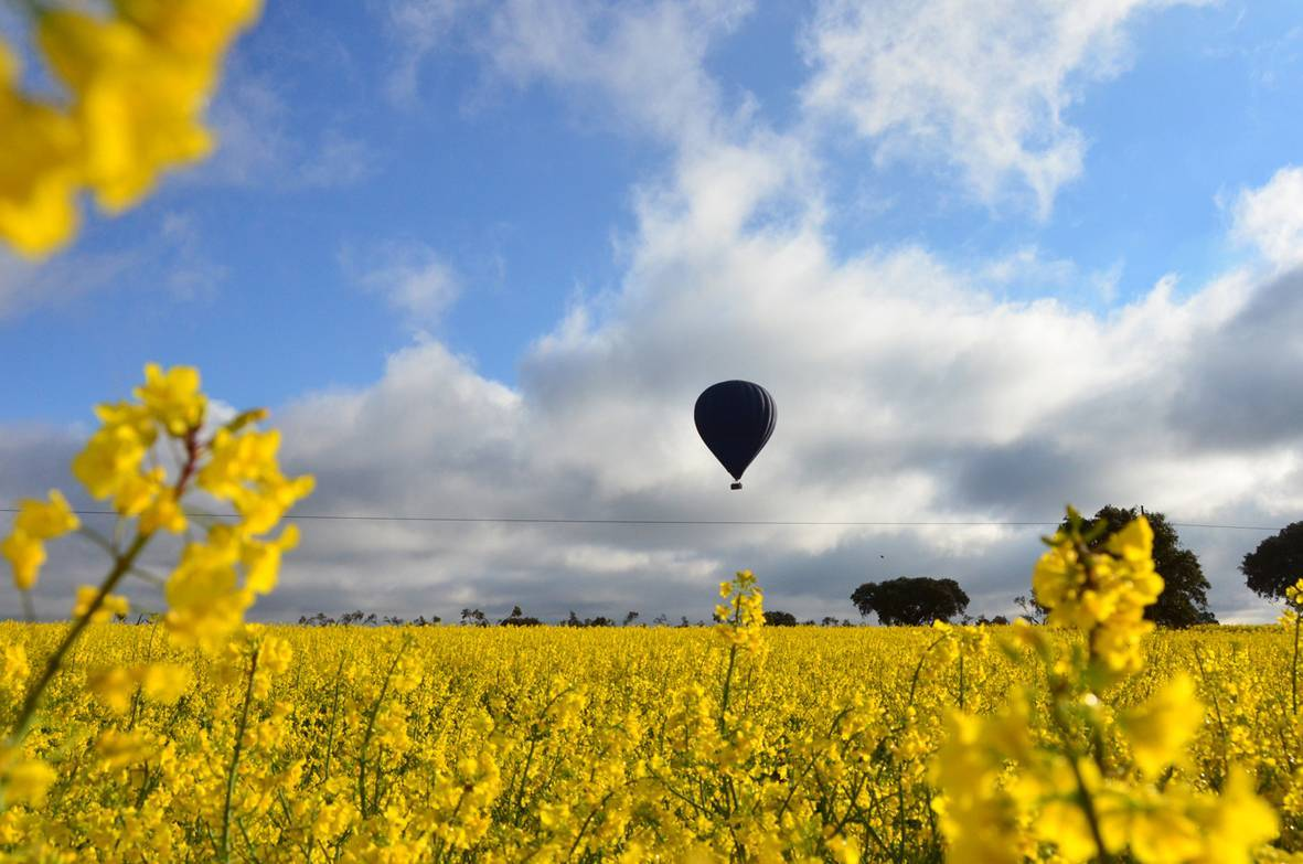 Primavera en globo aerostático